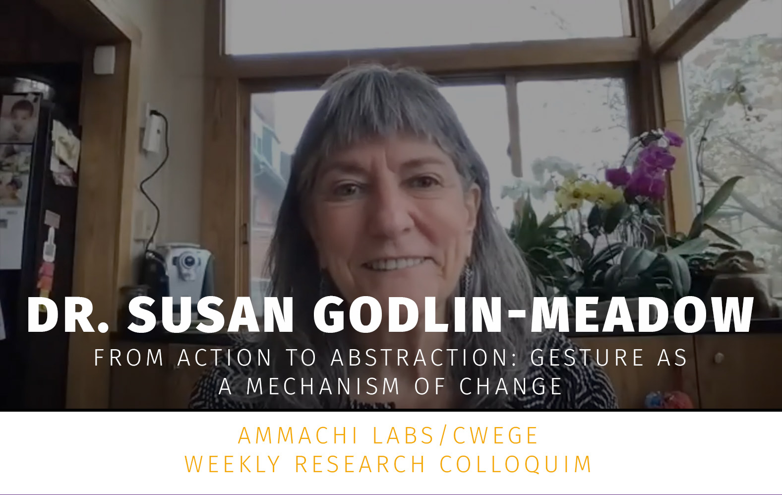 Dr. Susan Godlin Meadows talk
